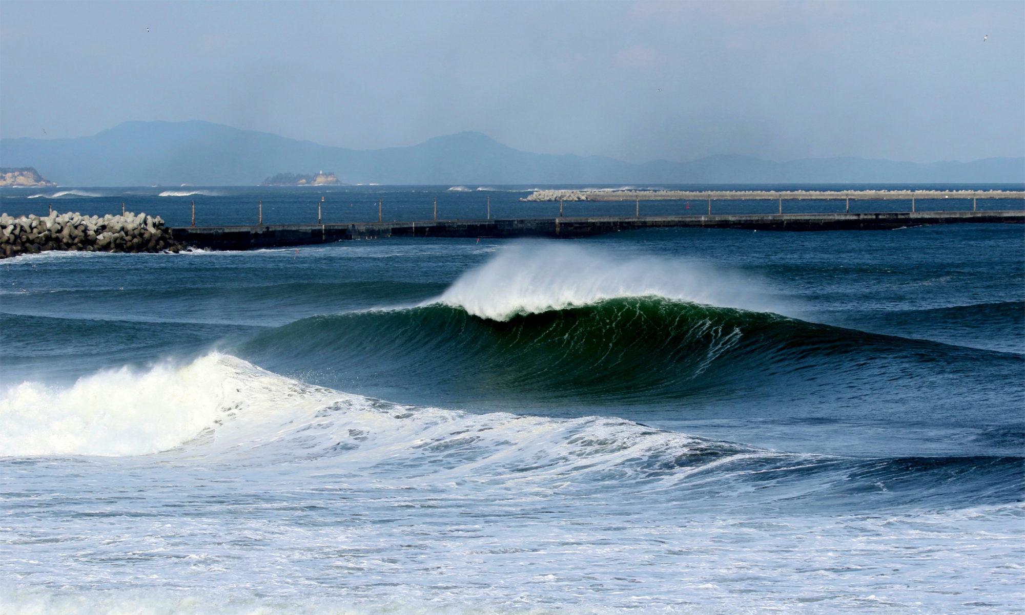 surf grandnest